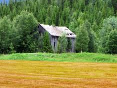 Pozor na nelegálne stavby na vašom pozemku pri predaji nehnuteľnosti!
