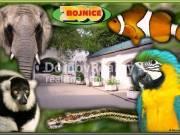 zoo_bojnice_0
